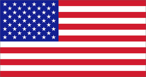 1-lg-american-flag